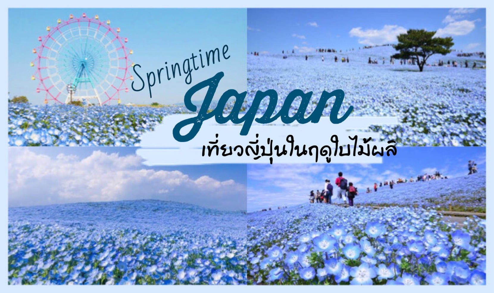 ทัวร์ญี่ปุ่น – เที่ยวญี่ปุ่นในฤดูใบไม้ผลิ นั้นมีอะไรดี ที่ทำให้คุณนั้นต้องอยากไป!