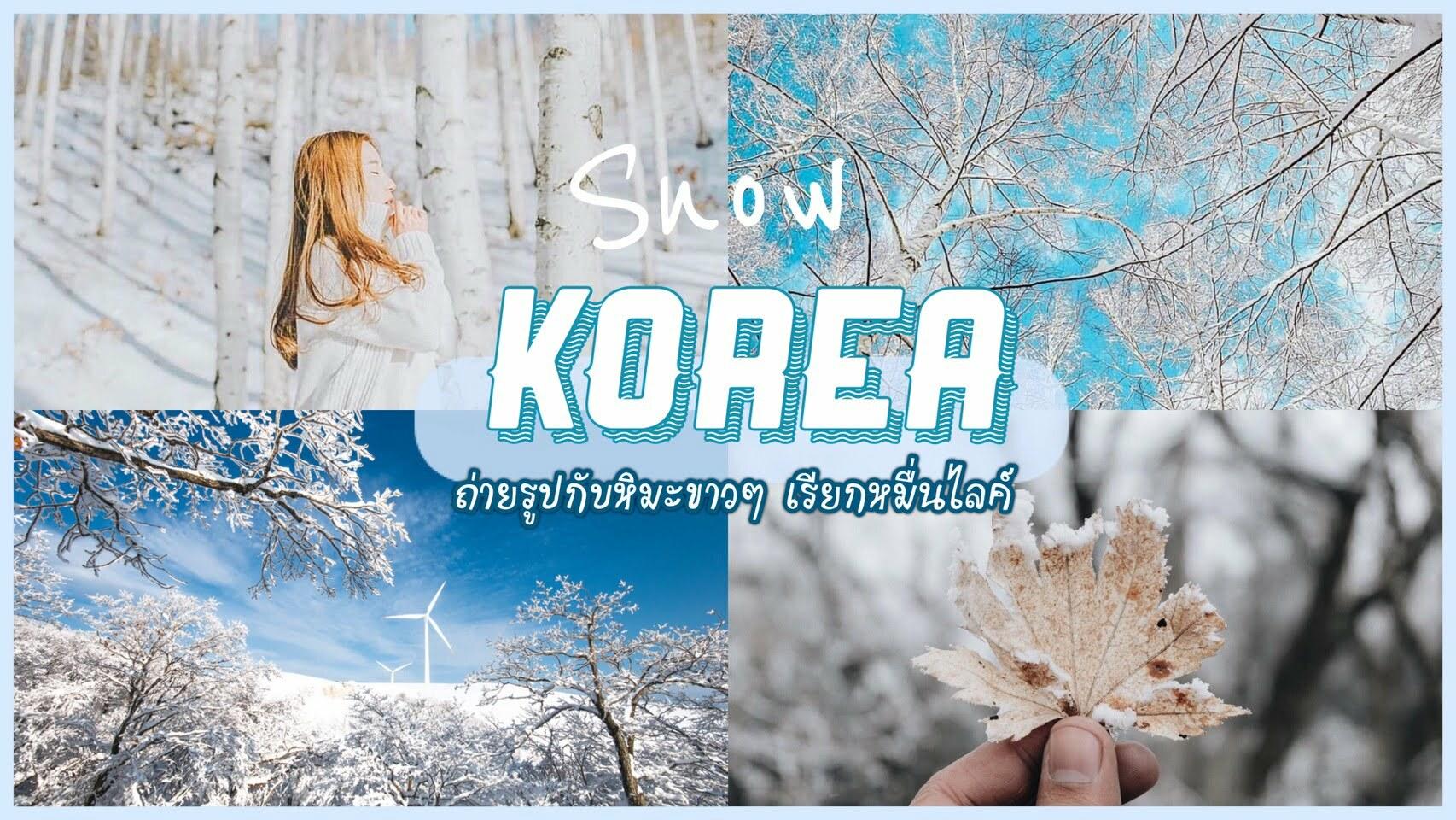 เที่ยวเกาหลีหน้าหนาว ถ่ายรูปกับหิมะขาวๆเรียกหมื่นไลค์